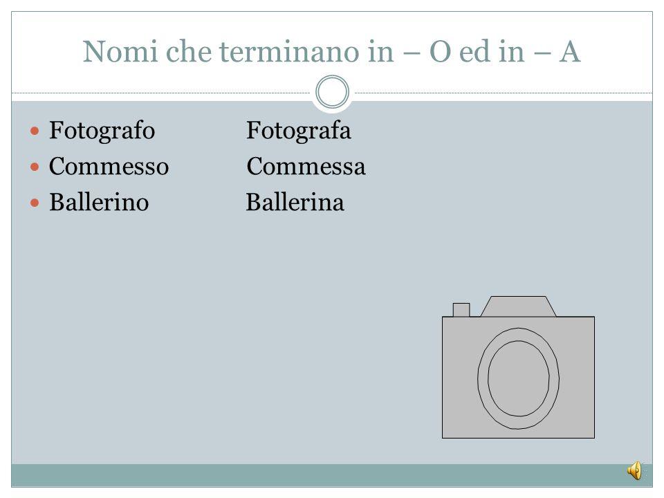 IL LAVORO : I MESTIERI, LE ATTIVITÀ, LE PROFESSIONI. Italiano per stranieri- L2 Lezione 3