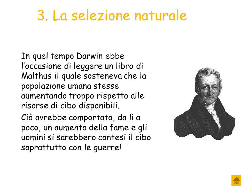 2. La selezione naturale Infatti, se la selezione artificiale, in alcuni millenni, era riuscita a determinare tra gli organismi differenze tali da pro