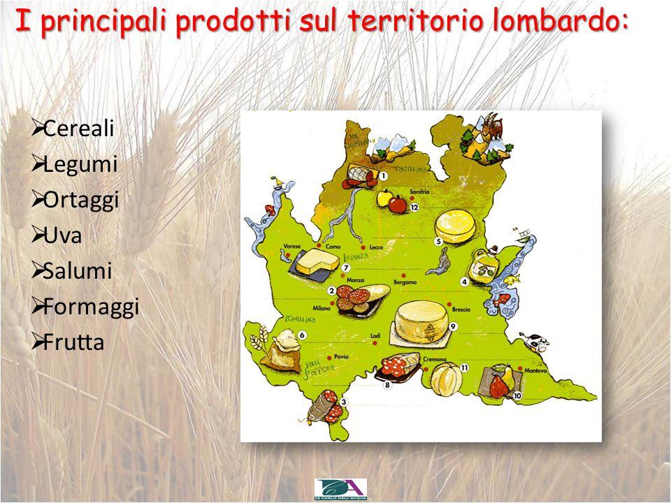 I principali prodotti sul territorio lombardo:  Cereali  Legumi  Ortaggi  Uva  Salumi  Formaggi  Frutta