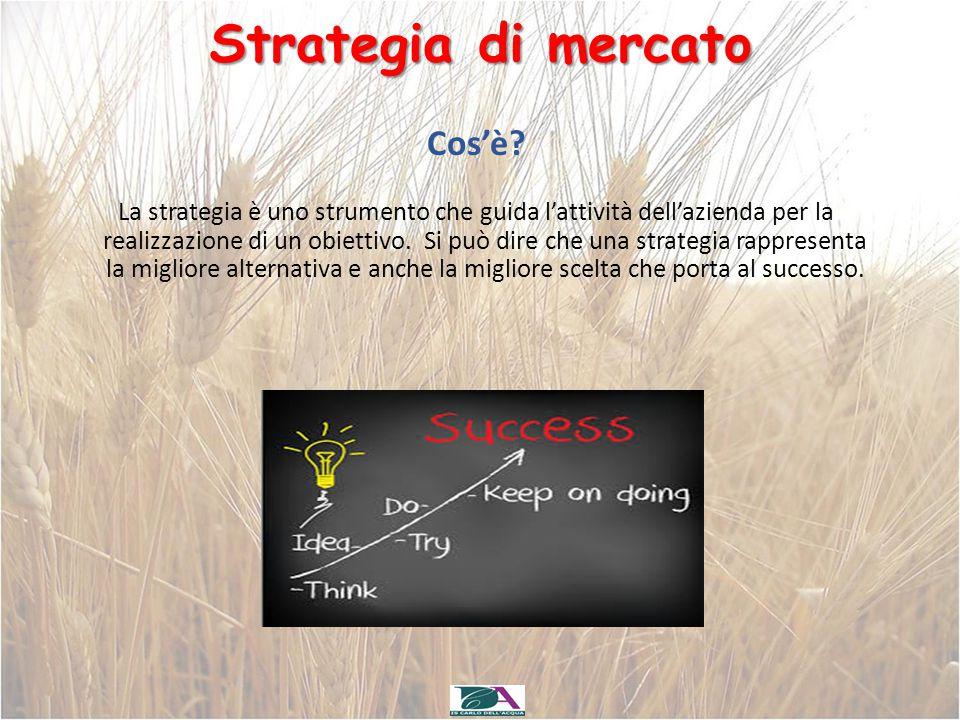 Strategia di mercato La strategia è uno strumento che guida l'attività dell'azienda per la realizzazione di un obiettivo. Si può dire che una strategi