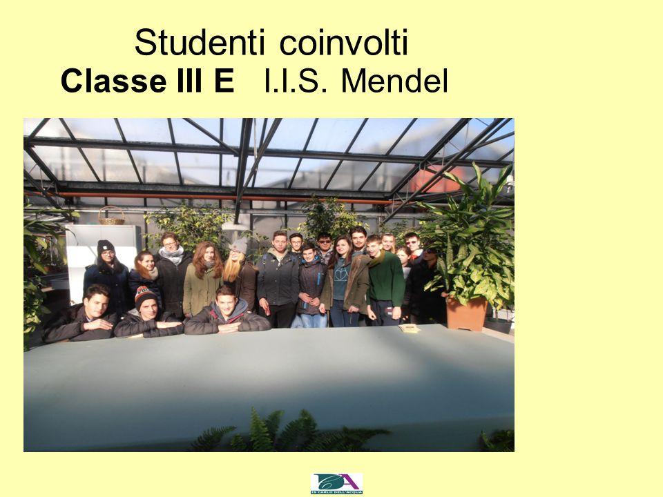 Studenti coinvolti Classe III E I.I.S. Mendel