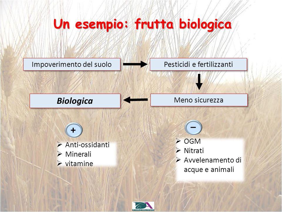 Un esempio: frutta biologica Impoverimento del suolo Pesticidi e fertilizzanti Meno sicurezza Biologica + _  Anti-ossidanti  Minerali  vitamine  O
