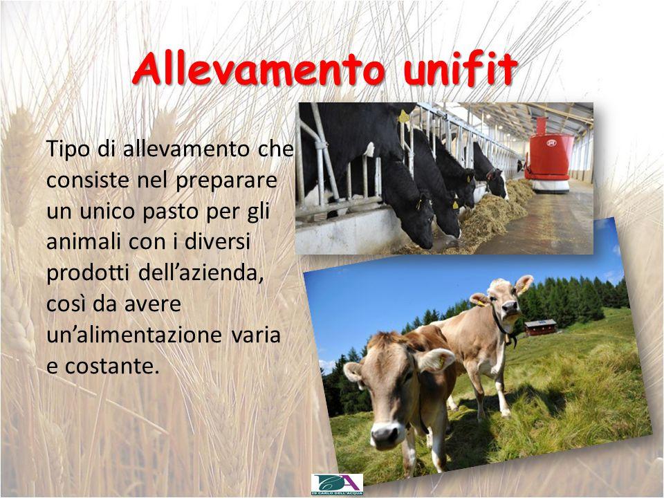 Allevamento unifit Tipo di allevamento che consiste nel preparare un unico pasto per gli animali con i diversi prodotti dell'azienda, così da avere un