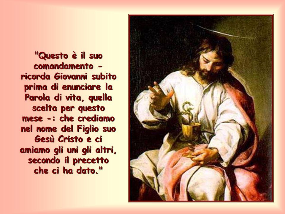 Sono tanti i comandamenti che occorre osservare per giungere a questa unità? No, dal momento che Gesù li ha condensati in un solo comando.