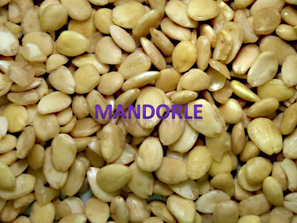 Per il ripieno: Faldacchiera(tuorli d' uovo e zucchero in uguale peso) Per preparare la pasta di mandorle impastare a freddo tutti gli ingredienti reg