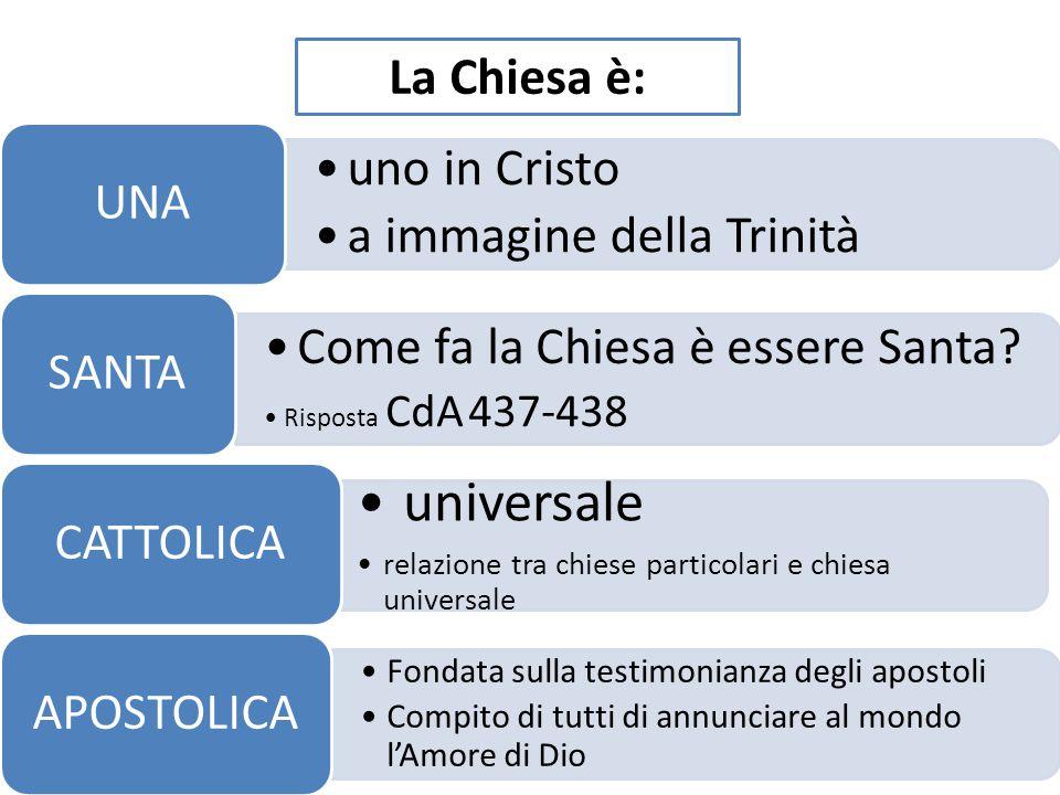 uno in Cristo a immagine della Trinità UNA Come fa la Chiesa è essere Santa? Risposta CdA 437-438 SANTA universale relazione tra chiese particolari e