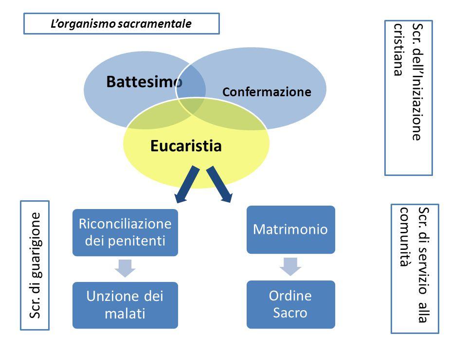 Battesimo Confermazione Eucaristia Riconciliazione dei penitenti Unzione dei malati Matrimonio Ordine Sacro L'organismo sacramentale Scr. di guarigion