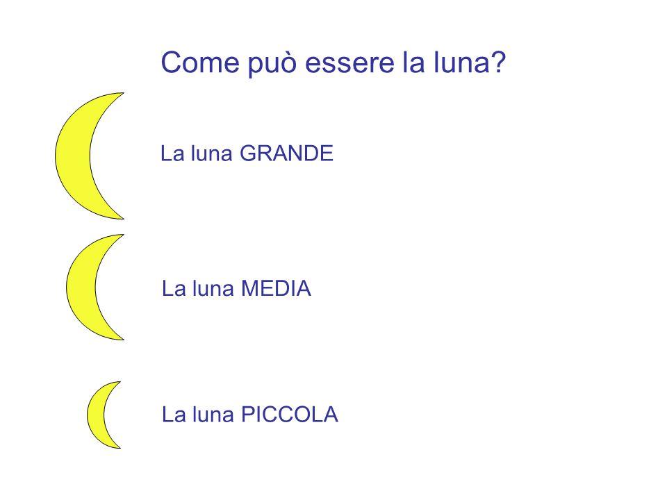 Come può essere la luna? La luna GRANDE La luna MEDIA La luna PICCOLA
