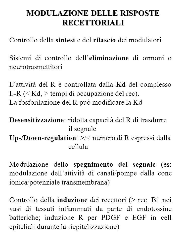 MODULAZIONE DELLE RISPOSTE RECETTORIALI Controllo della sintesi e del rilascio dei modulatori Sistemi di controllo dell'eliminazione di ormoni o neuro