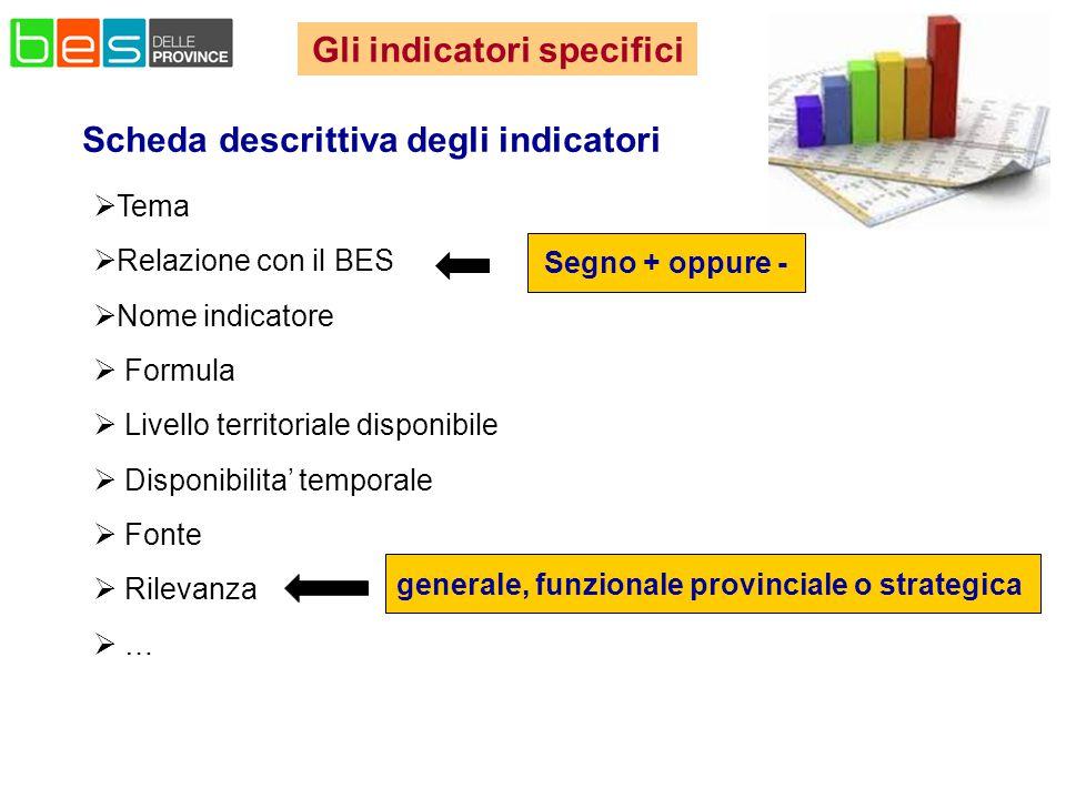 Scheda descrittiva degli indicatori  Tema  Relazione con il BES  Nome indicatore  Formula  Livello territoriale disponibile  Disponibilita' temporale  Fonte  Rilevanza  … Segno + oppure - generale, funzionale provinciale o strategica Gli indicatori specifici