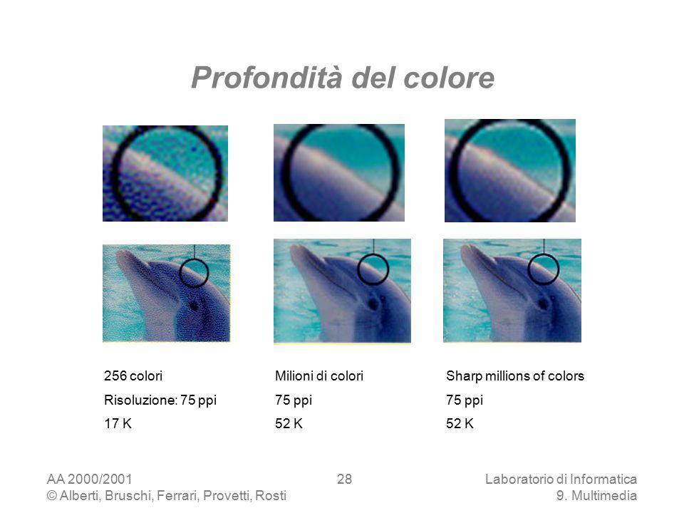 AA 2000/2001 © Alberti, Bruschi, Ferrari, Provetti, Rosti Laboratorio di Informatica 9. Multimedia 28 Profondità del colore 256 colori Risoluzione: 75