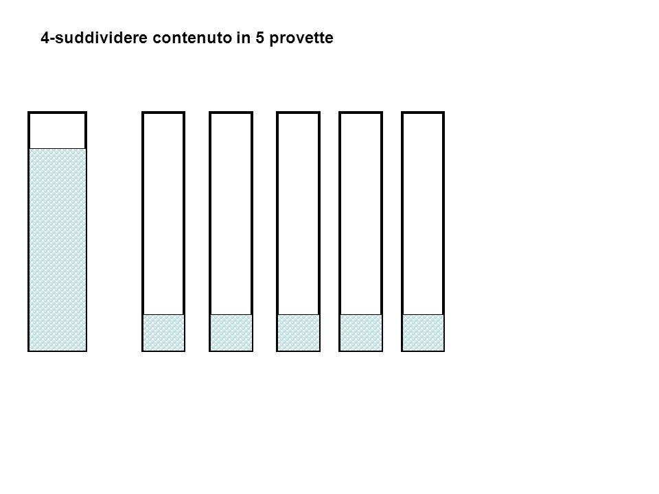 4-suddividere contenuto in 5 provette