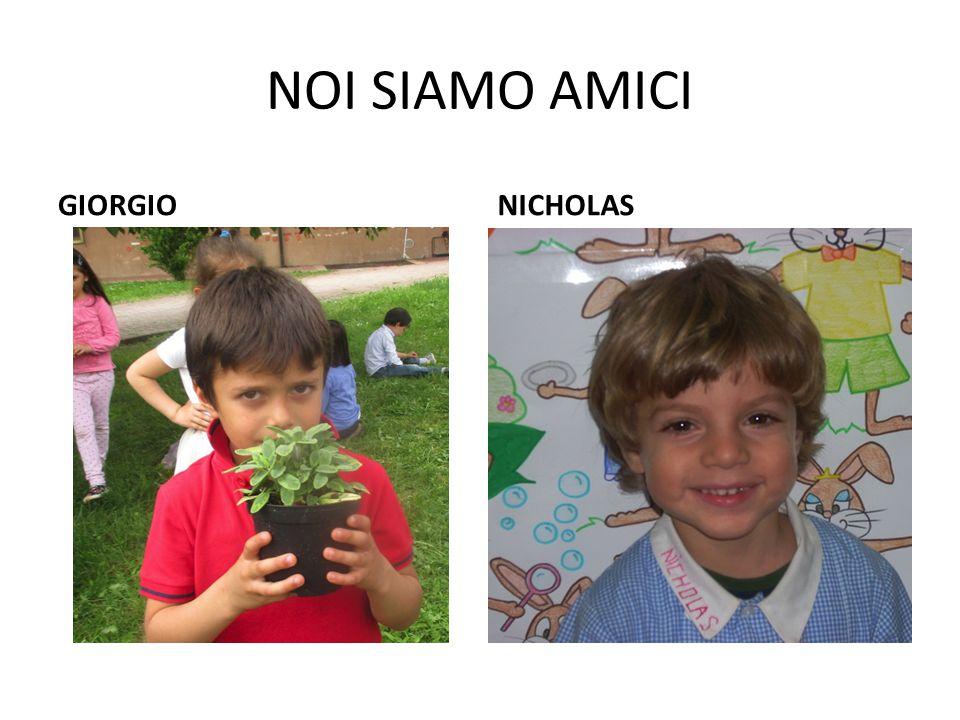 NOI SIAMO AMICI GIORGIONICHOLAS