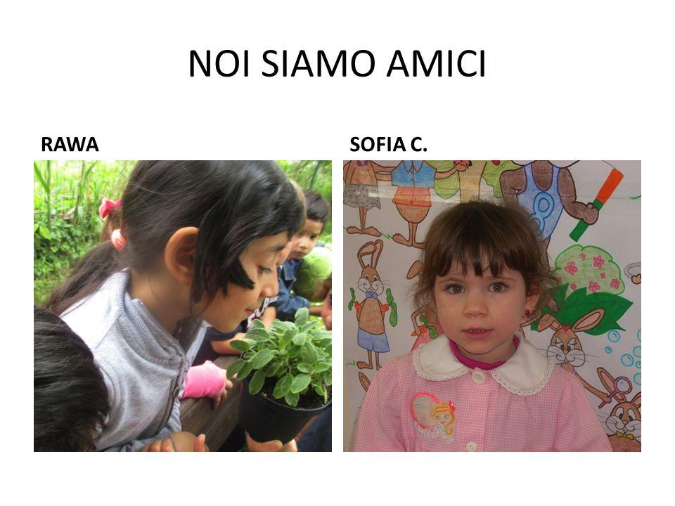 NOI SIAMO AMICI RAWASOFIA C.