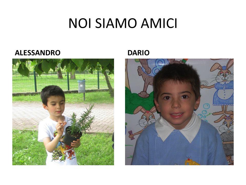 NOI SIAMO AMICI ALESSANDRODARIO