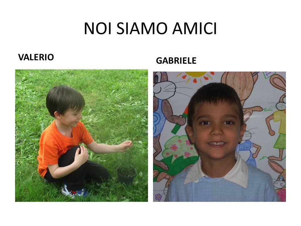 NOI SIAMO AMICI VALERIO GABRIELE