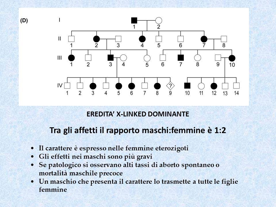 EREDITA' X-LINKED DOMINANTE Tra gli affetti il rapporto maschi:femmine è 1:2 Il carattere è espresso nelle femmine eterozigoti Gli effetti nei maschi