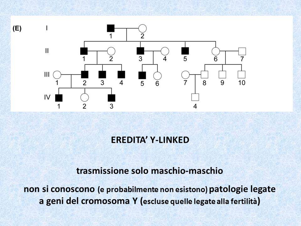 EREDITA' Y-LINKED trasmissione solo maschio-maschio non si conoscono (e probabilmente non esistono) patologie legate a geni del cromosoma Y ( escluse