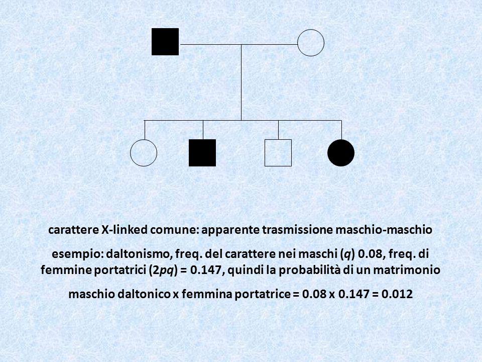 carattere X-linked comune: apparente trasmissione maschio-maschio esempio: daltonismo, freq. del carattere nei maschi (q) 0.08, freq. di femmine porta