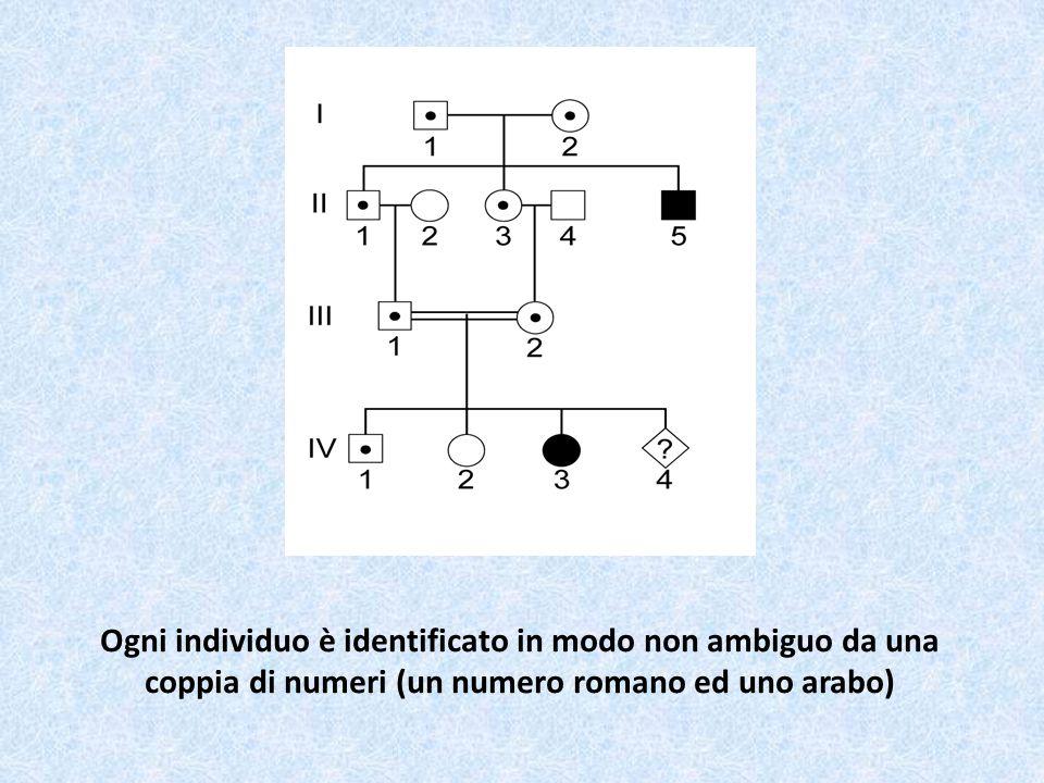 Ogni individuo è identificato in modo non ambiguo da una coppia di numeri (un numero romano ed uno arabo)