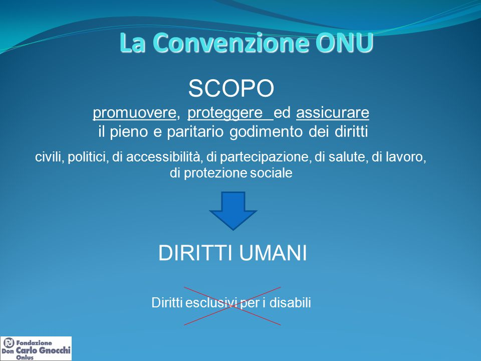 La Convenzione ONU SCOPO promuovere, proteggere ed assicurare il pieno e paritario godimento dei diritti civili, politici, di accessibilità, di partec