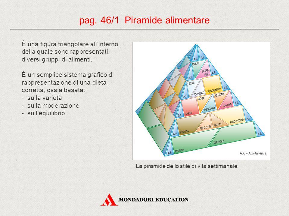 È una figura triangolare all'interno della quale sono rappresentati i diversi gruppi di alimenti.