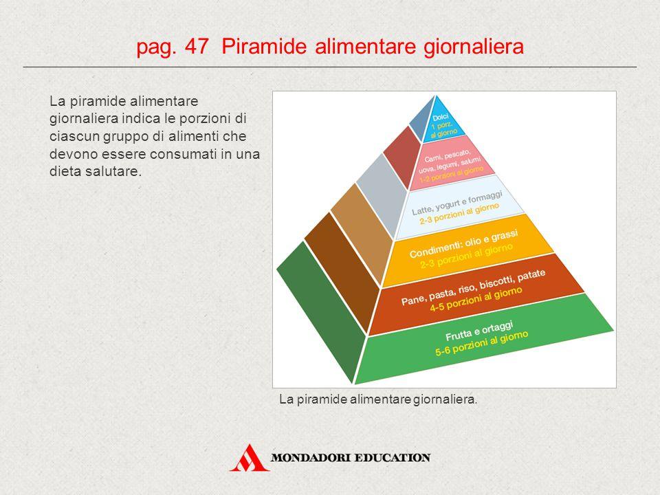 La piramide alimentare giornaliera indica le porzioni di ciascun gruppo di alimenti che devono essere consumati in una dieta salutare.