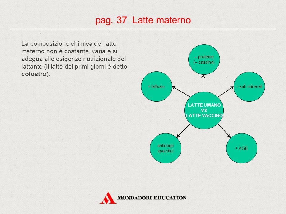 La composizione chimica del latte materno non è costante, varia e si adegua alle esigenze nutrizionale del lattante (il latte dei primi giorni è detto colostro).