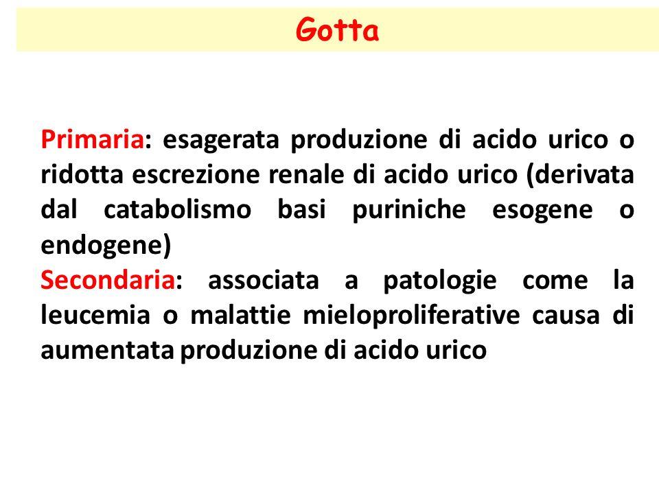 Gotta Primaria: esagerata produzione di acido urico o ridotta escrezione renale di acido urico (derivata dal catabolismo basi puriniche esogene o endo