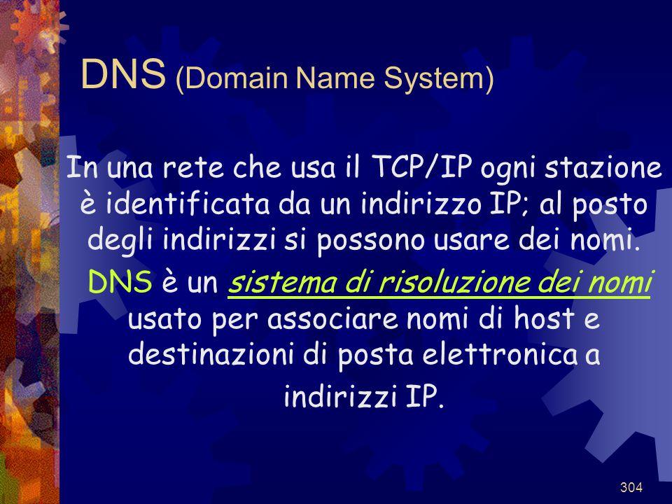 304 DNS (Domain Name System) In una rete che usa il TCP/IP ogni stazione è identificata da un indirizzo IP; al posto degli indirizzi si possono usare