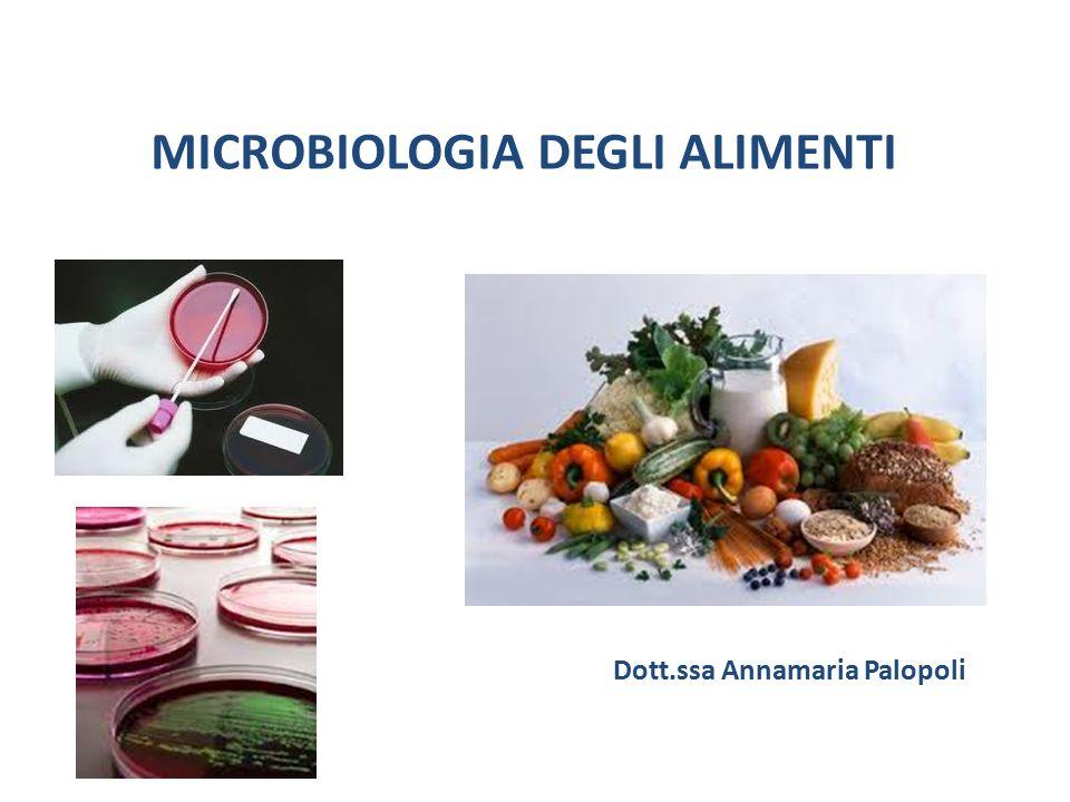 MICROBIOLOGIA DEGLI ALIMENTI Dott.ssa Annamaria Palopoli