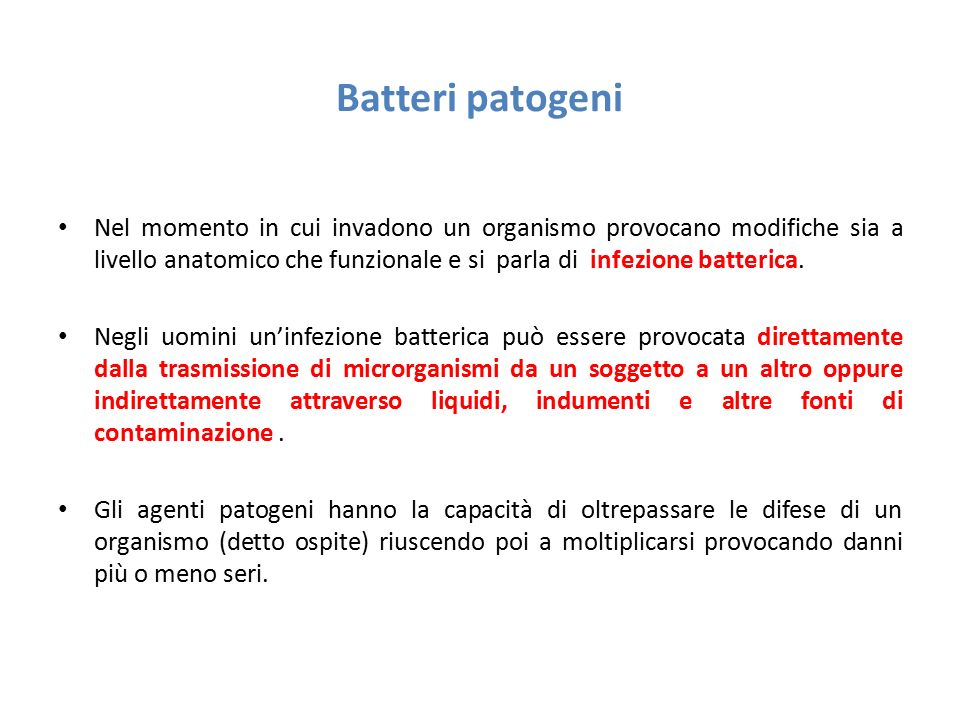Batteri patogeni Nel momento in cui invadono un organismo provocano modifiche sia a livello anatomico che funzionale e si parla di infezione batterica