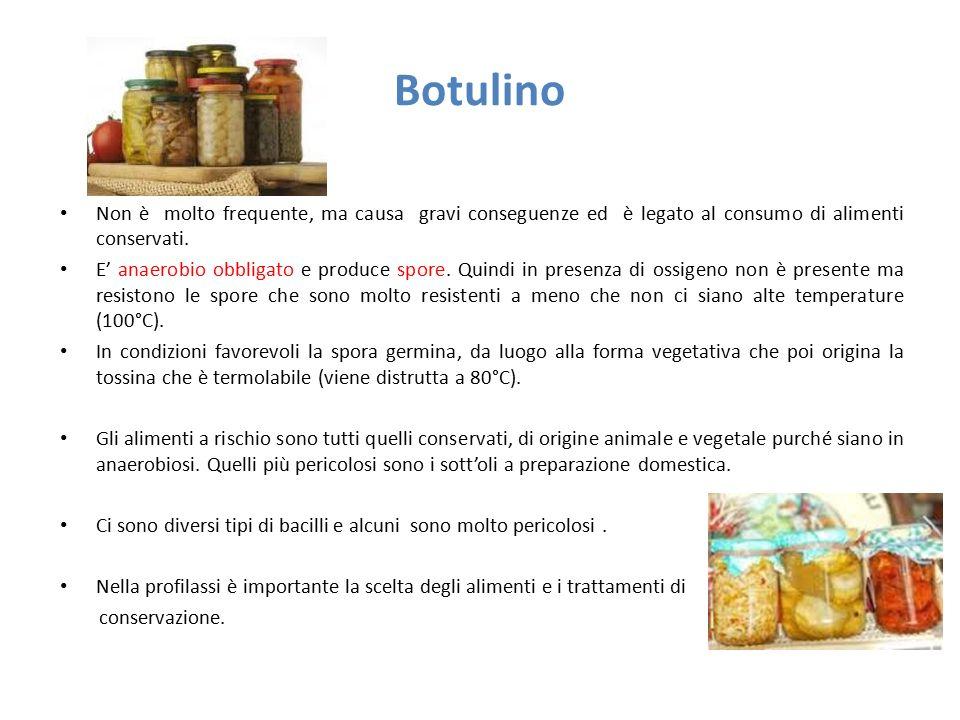 Botulino Non è molto frequente, ma causa gravi conseguenze ed è legato al consumo di alimenti conservati. E' anaerobio obbligato e produce spore. Quin