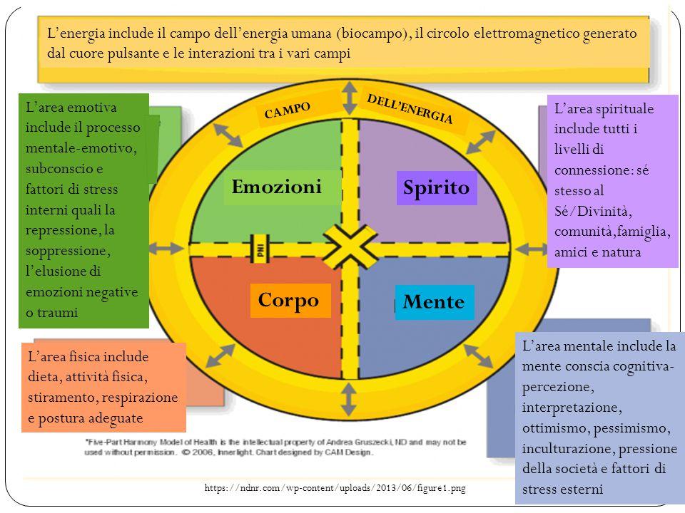 https://ndnr.com/wp-content/uploads/2013/06/figure1.png Emozioni Spirito Corpo Mente L'energia include il campo dell'energia umana (biocampo), il circ