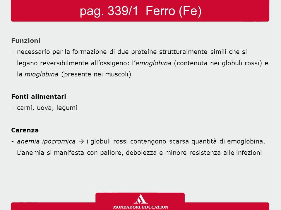 Funzioni -necessario per la formazione di due proteine strutturalmente simili che si legano reversibilmente all'ossigeno: l'emoglobina (contenuta nei globuli rossi) e la mioglobina (presente nei muscoli) Fonti alimentari -carni, uova, legumi Carenza -anemia ipocromica  i globuli rossi contengono scarsa quantità di emoglobina.