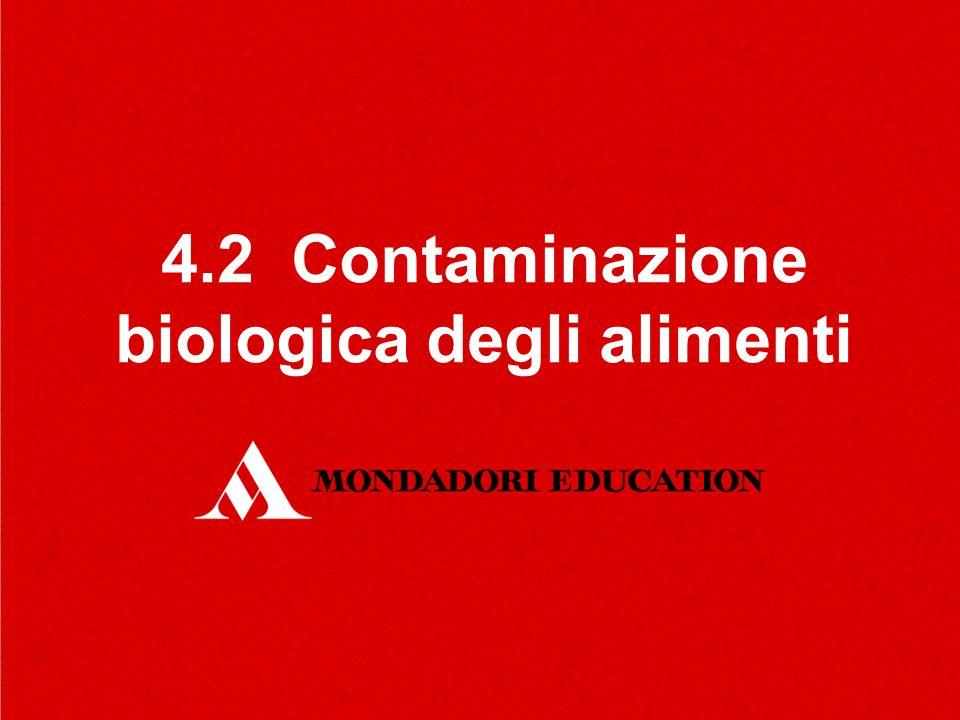 4.2 Contaminazione biologica degli alimenti