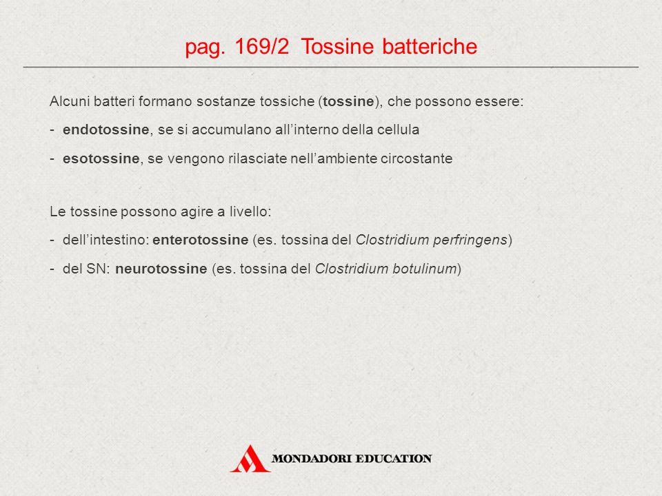 Alcuni batteri formano sostanze tossiche (tossine), che possono essere: - endotossine, se si accumulano all'interno della cellula - esotossine, se ven