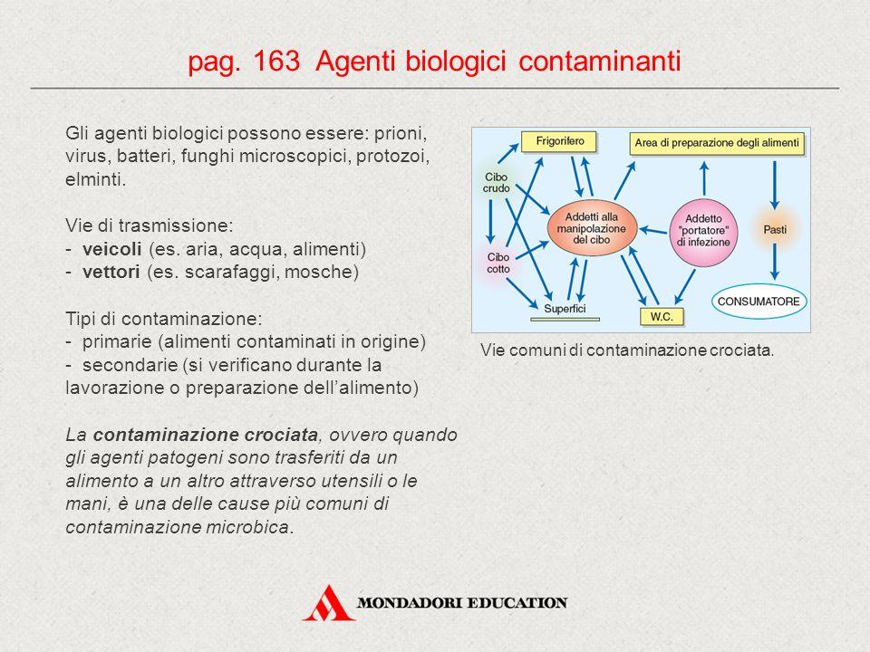 Gli agenti biologici possono essere: prioni, virus, batteri, funghi microscopici, protozoi, elminti. Vie di trasmissione: - veicoli (es. aria, acqua,