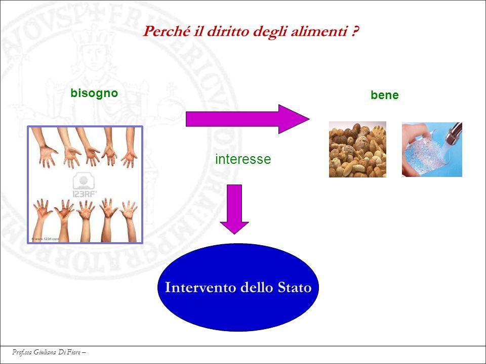 Perché il diritto degli alimenti ? bisogno bene interesse Intervento dello Stato Prof.ssa Giuliana Di Fiore –