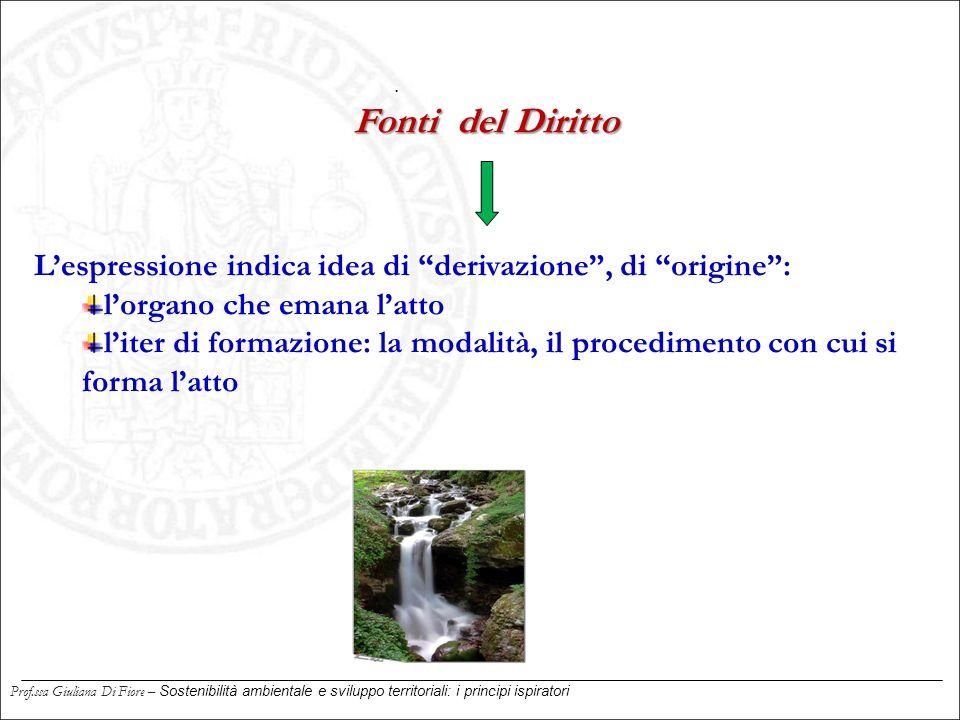 """. L'espressione indica idea di """"derivazione"""", di """"origine"""": l'organo che emana l'atto l'iter di formazione: la modalità, il procedimento con cui si fo"""