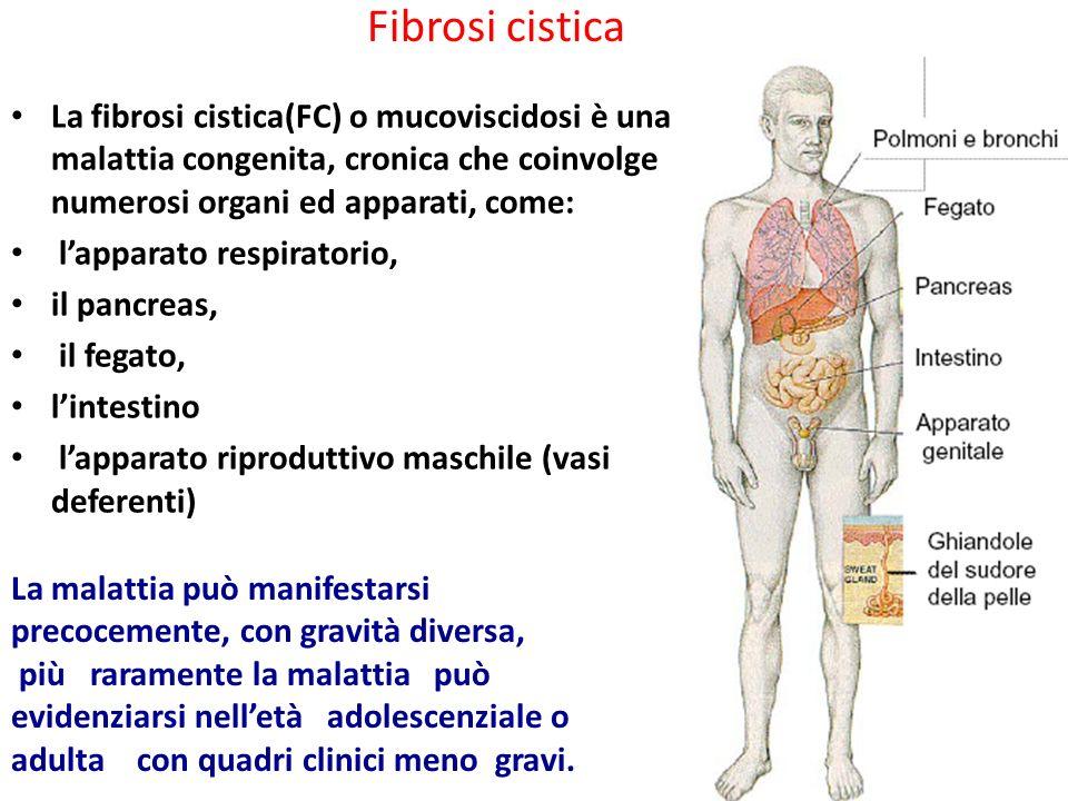 La fibrosi cistica(FC) o mucoviscidosi è una malattia congenita, cronica che coinvolge numerosi organi ed apparati, come: l'apparato respiratorio, il