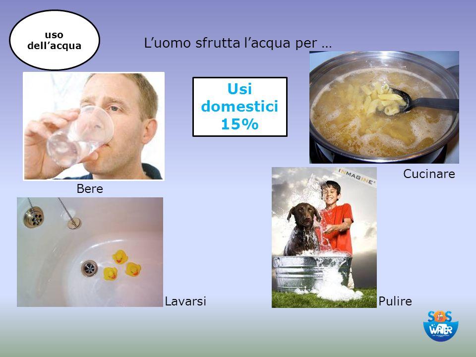 L'uomo sfrutta l'acqua per … Bere Cucinare PulireLavarsi Usi domestici 15% uso dell'acqua