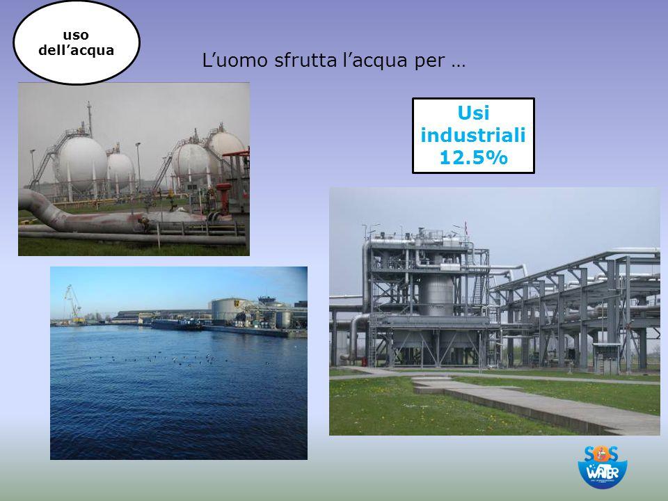 L'uomo sfrutta l'acqua per … Usi industriali 12.5% uso dell'acqua