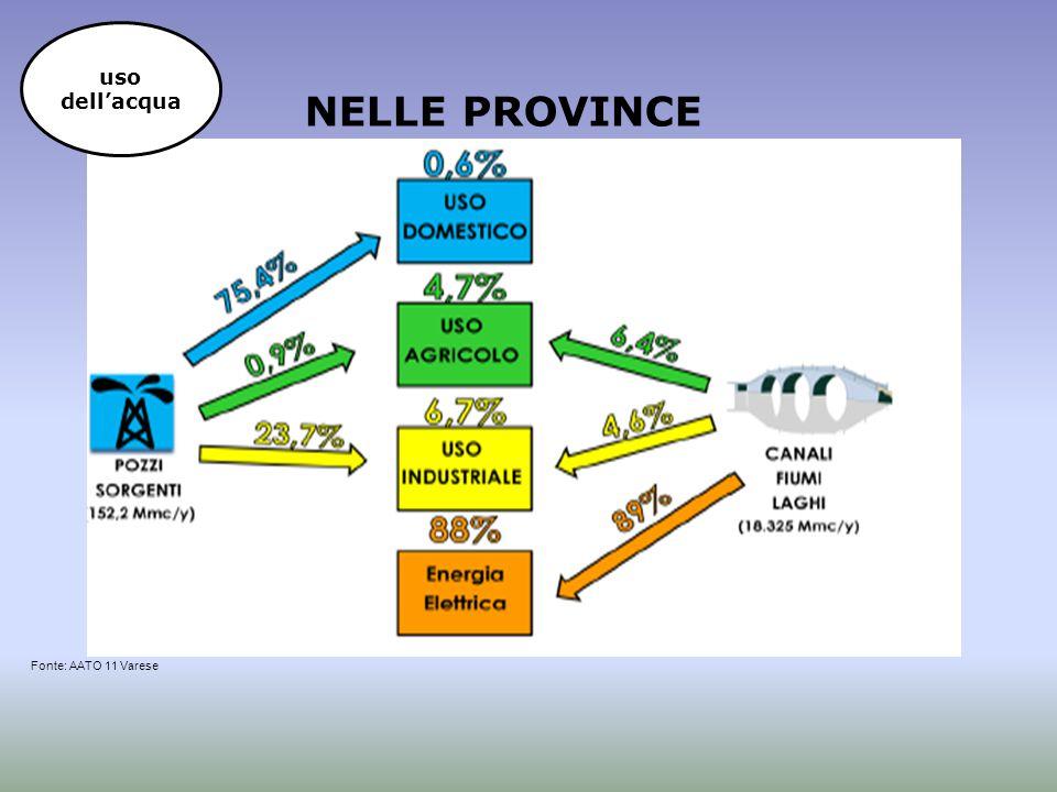 uso dell'acqua NELLE PROVINCE Fonte: AATO 11 Varese