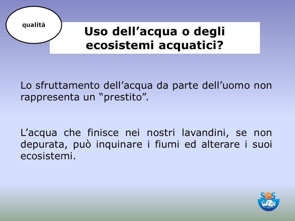 """Uso dell'acqua o degli ecosistemi acquatici? Lo sfruttamento dell'acqua da parte dell'uomo non rappresenta un """"prestito"""". L'acqua che finisce nei nost"""