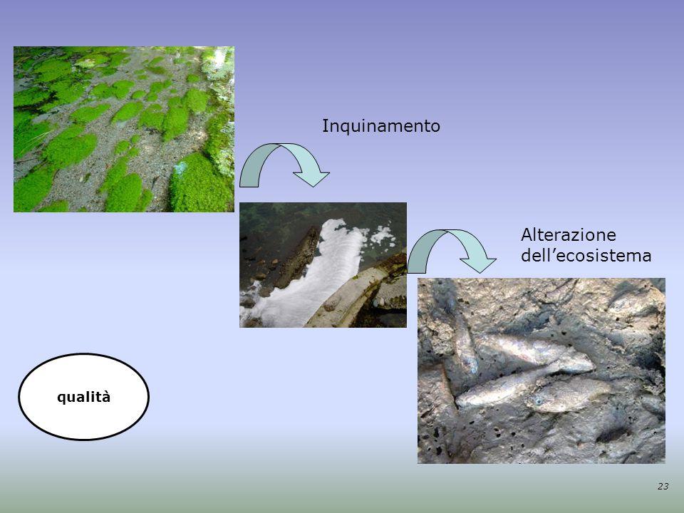 Inquinamento Alterazione dell'ecosistema 23 qualità