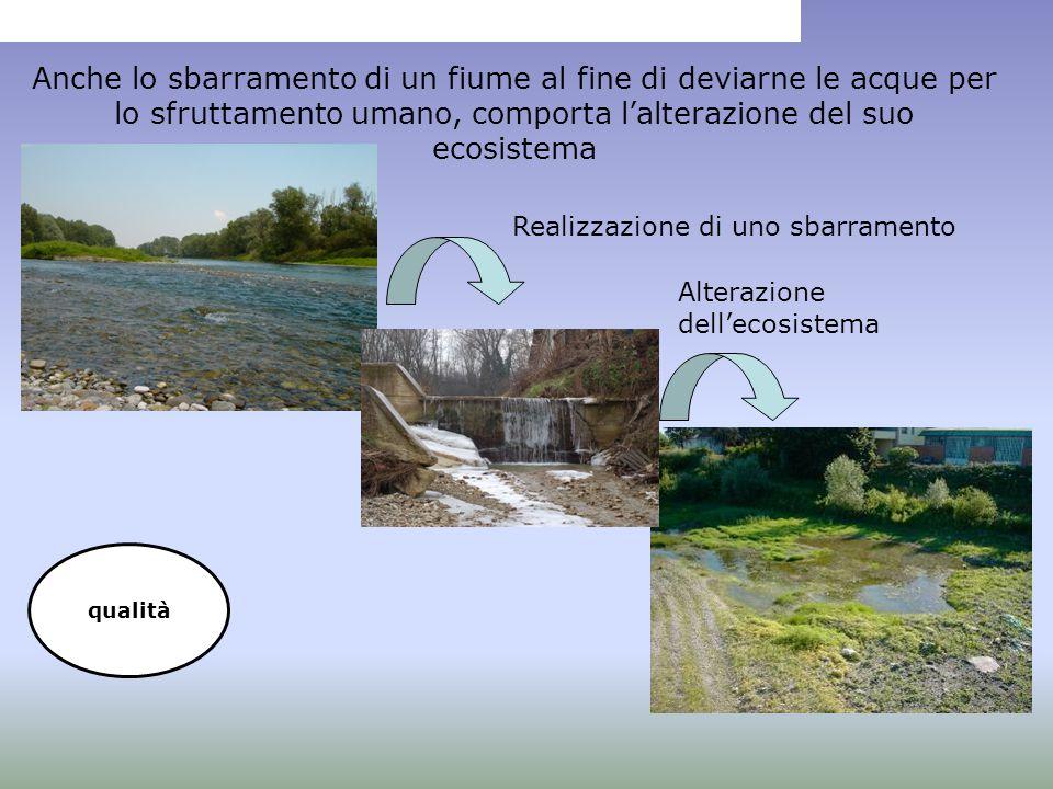 Anche lo sbarramento di un fiume al fine di deviarne le acque per lo sfruttamento umano, comporta l'alterazione del suo ecosistema Realizzazione di un
