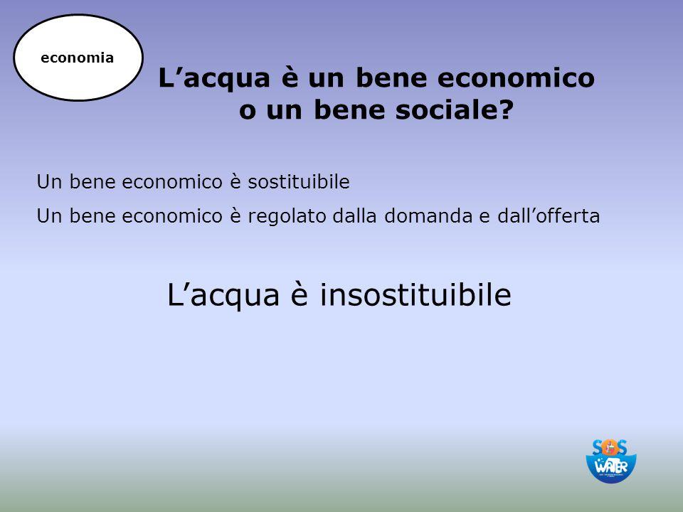 Un bene economico è sostituibile Un bene economico è regolato dalla domanda e dall'offerta L'acqua è un bene economico o un bene sociale? L'acqua è in
