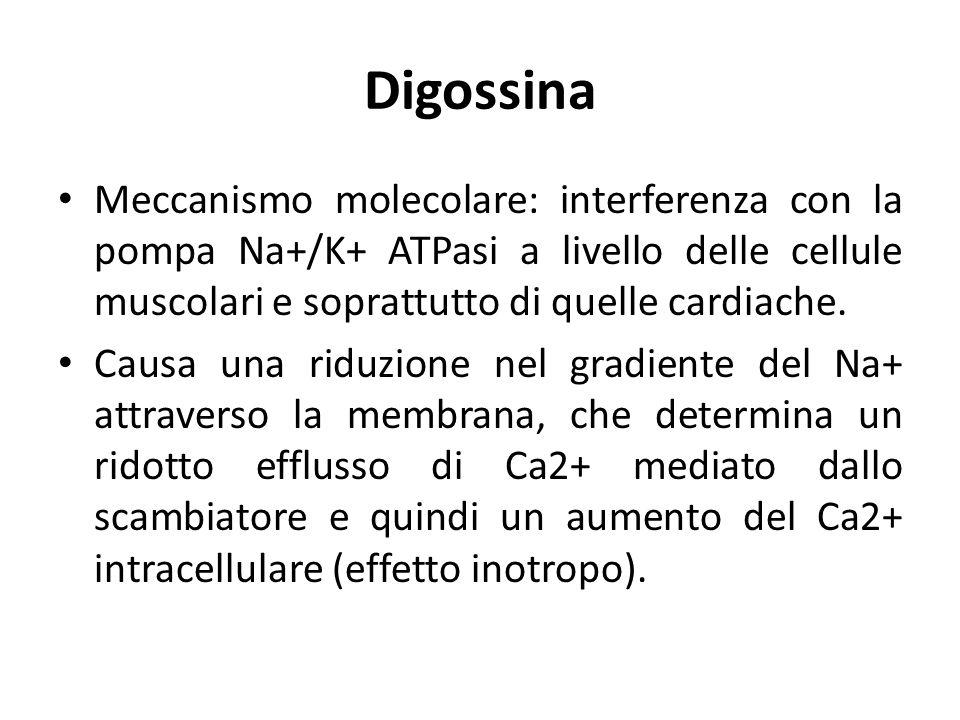 Digossina Meccanismo molecolare: interferenza con la pompa Na+/K+ ATPasi a livello delle cellule muscolari e soprattutto di quelle cardiache. Causa un