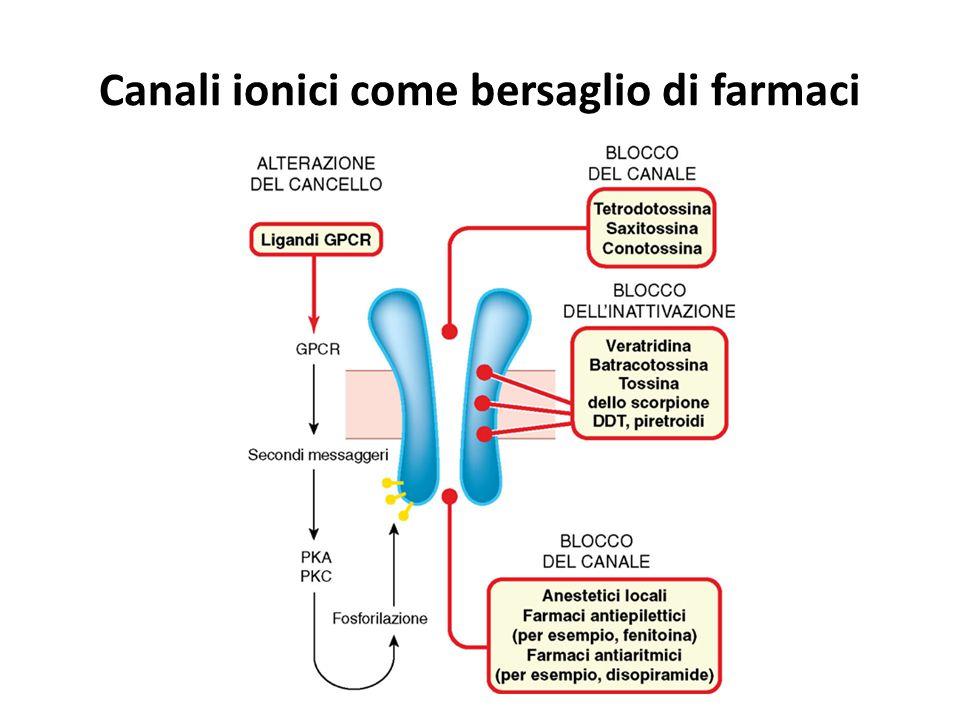 Canali ionici come bersaglio di farmaci